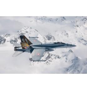 """ITALERI 1394 Samolot F/A-18 Hornet """"Tiger Meet 2016"""""""