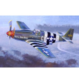 MISTERCRAFT C-49 Samolot P-51 B5 Hurry H.H.
